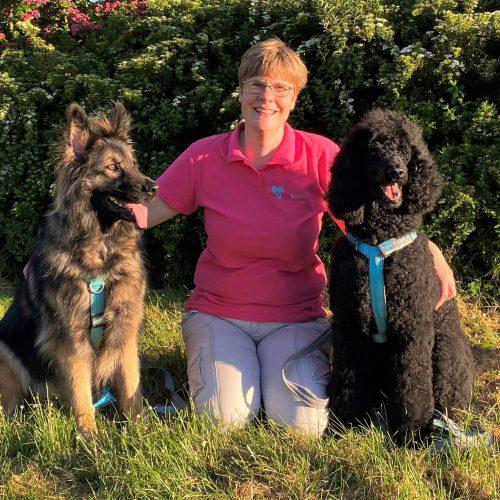 Hondenkracht – De (on)afhankelijke Relatie Tussen Hond En Mens